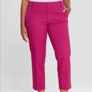 Magenta Ava & Viv comfort waistband ankle pants